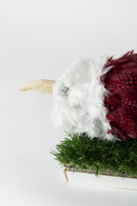 FAKE STUFFED BIRD, Bram Verstraeten, wood, feathers