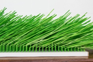 THE FOREST, Bram Verstraeten,  wood, 1000 satay sticks.