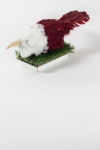 FAKE STUFFED BIRD, Bram Verstraeten, wood, feathers.